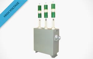 R1000f Individual Capacitor cw Fusing